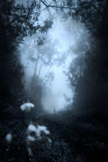 Dark Exploring