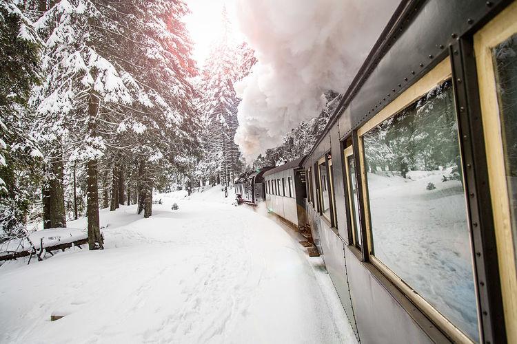 Smoke emitting train on snow covered field
