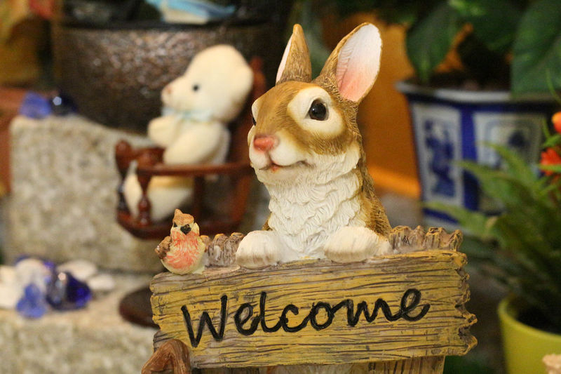 Welcome bunny. Sign Bunny  Welcome Rabbit Friendly
