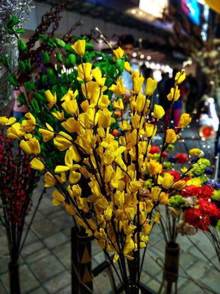 Flower show market. It's a low-light mobile photography. #flowermarket #MobilePhotography #lowlightphotography #Lowlight Flower Multi Colored Yellow Nature Plant Outdoors No People Close-up