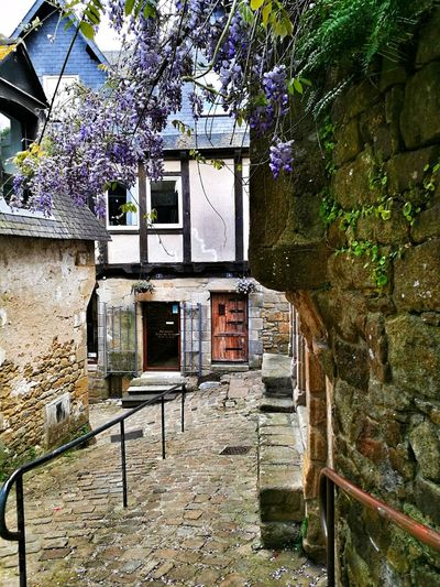 Streetphotography Street Photography Flowers Architecture Built Structure Building Exterior No People Outdoors Saint Goustan 56 Morbihan (56) Bretagne France🇫🇷 Huawei P9 Leica HuaweiP9Photography