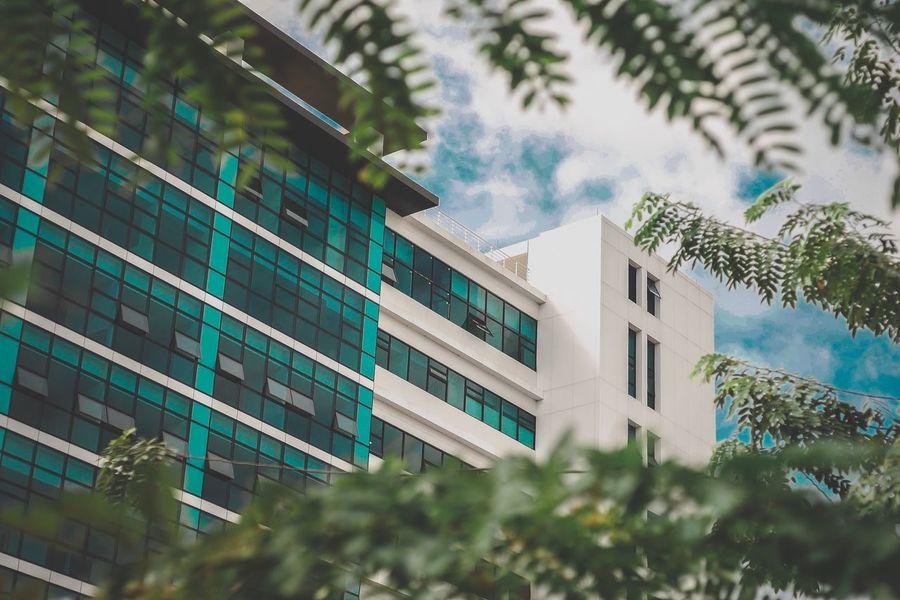 อาคาร Building Exterior Architecture Built Structure Tree Building Plant Window No People Nature Low Angle View City Residential District Growth Day Sky Outdoors Modern Office Building Exterior Glass - Material Green Color