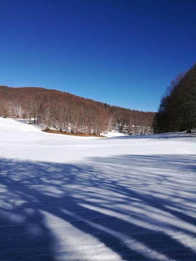 Parco Nazionale Della Sila Beautiful Calabria Winter Neve CamigliatelloSila Motoslitta Gitefuoriporta Outdoors Clear Sky Mountain Lake Tranquility Blue Day Ice Winter Sport Scenics Sky Beauty In Nature