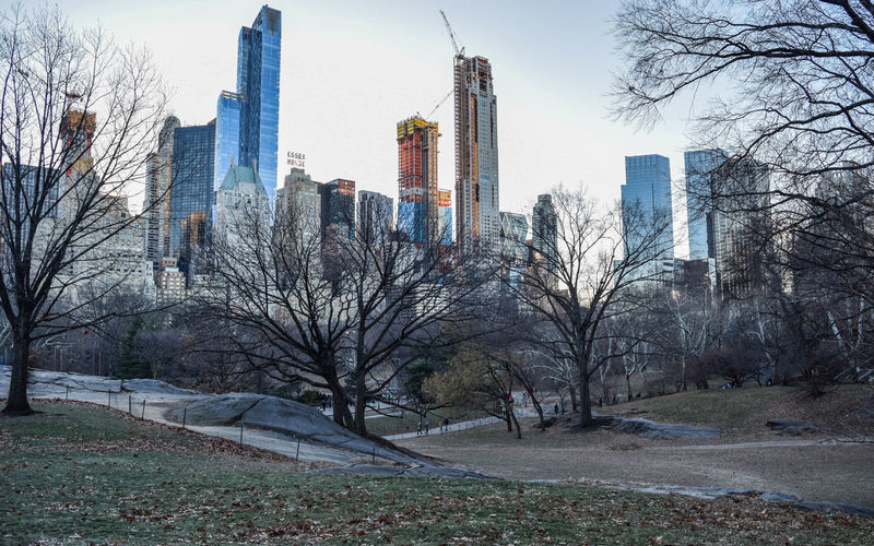 Central park - Manhattan Central Park EyeEmNewHere Manhattan Nikon Travel Photography Architecture Building Building Exterior Built Structure City Cityscape Day Financial District  Landscape Nature Nikonphotography No People Office Building Exterior Outdoors Park Skyscraper Tower Tree Urban Landscape Urban Skyline EyeEmNewHere
