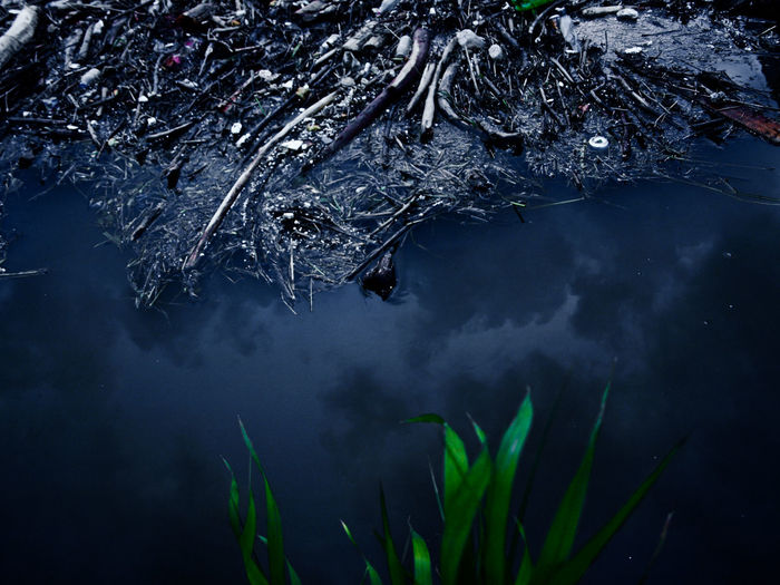 End Plastic Pollution Trash Cold Temperature Floating On Water High Angle View Lake Nature No People Outdoors Plant Reflection Standing Water Water Waterfront
