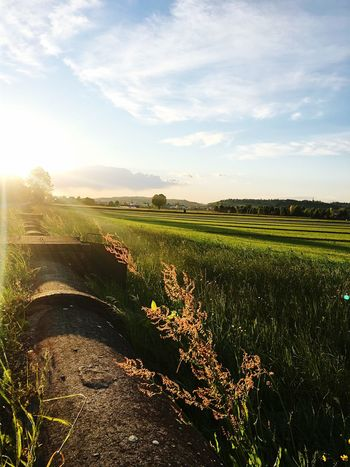 Enjoying Life countryside Lovelyview Landscape
