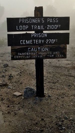 I always loved this sign at the Prison, 😂 Me Alone On A Walk Exploring Fun Beauty In Nature Misty Morning Fog Foggy Landscape Historic Prison IPhone Photography Information Guidance Sign No People Wood - Material Information Sign Nature Outdoors Message Close-up