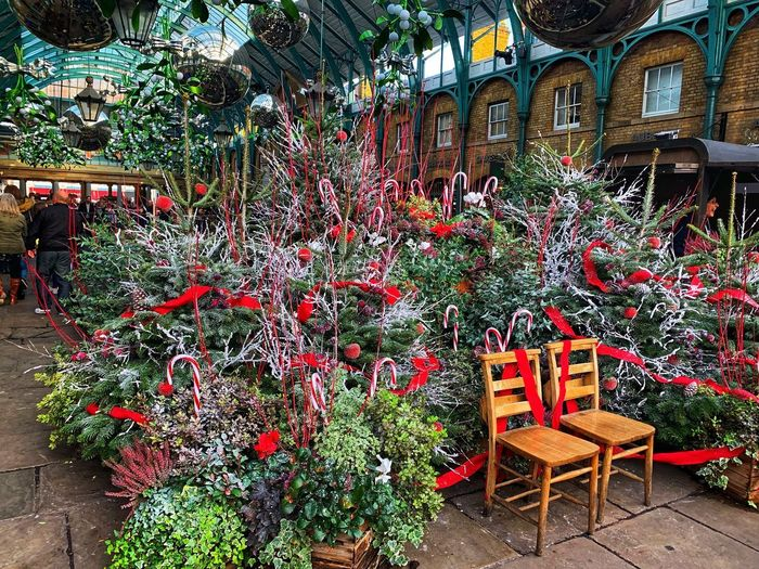 Christmas is coming Lifestyles London Not Long Till Christmas Architecture Chair Seat Day No People Building Exterior Outdoors Multi Colored Arrangement Plant Red