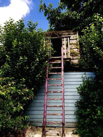 Hidden shed Secret Garden Appeltern Tuinen Van Appeltern