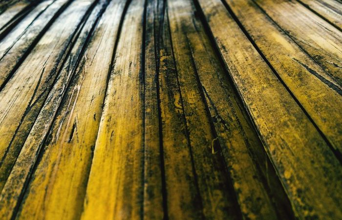 Full Frame Pattern No People Textured  Backgrounds Yellow Day Close-up Wood - Material Outdoors Nature Beauty In Nature Diminishing Perspective High Angle View Land Side By Side Rough Repetition Sunlight