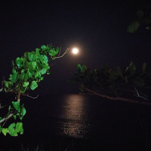 Reflections Moonlight Sea Reflections Nofilter
