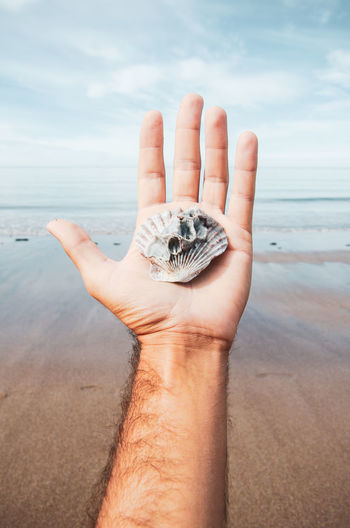 Cropped image of hand holding crab on beach