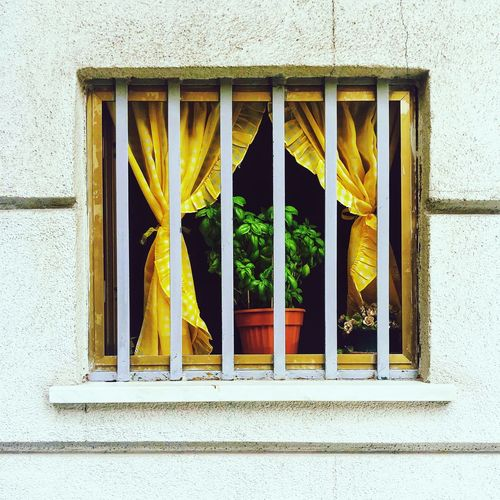 Close-up of yellow window of building