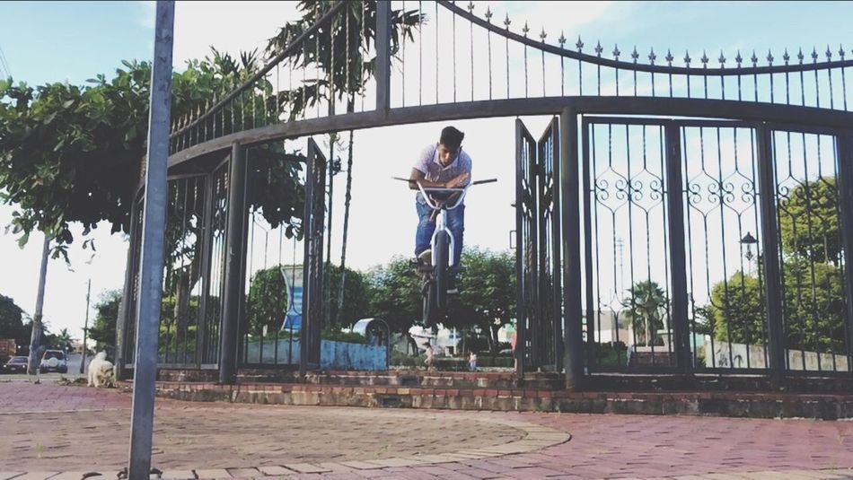 DiegoBalcazar Barspin Park Street BmxlagoagrioFull Length Day One Person Outdoors Tree Architecture Built Structure Lifestyles Strength Real People Adult People Adults Only One Woman Only Sky Only Women Young Adult City