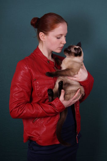 Young woman holding siamese cat against gray background