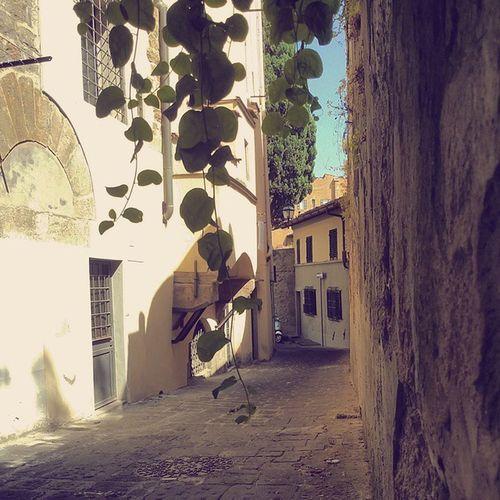 Ancora un pò ' di Firenze poco conosciuta facebook.com/simona.cassetti Firenze Florence Firenzecittanascosta Igerstoscana Igers_firenze Igersitalia Istagramersfirenze Occhidifirenze Friendsoflorence Vivotoscana Vivofirenze Firenzemadeintuscany Adayinflorence Igersfirenze Tuscanygram Summer Viewofflorence Vie Streetlife Urbanexploration Summer Strade Italia Toscana Vscocam