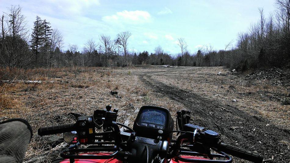 Four Wheeling Quads Woods Fun