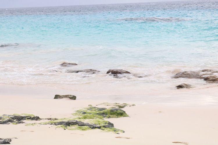 Empty sunny beach in bermuda