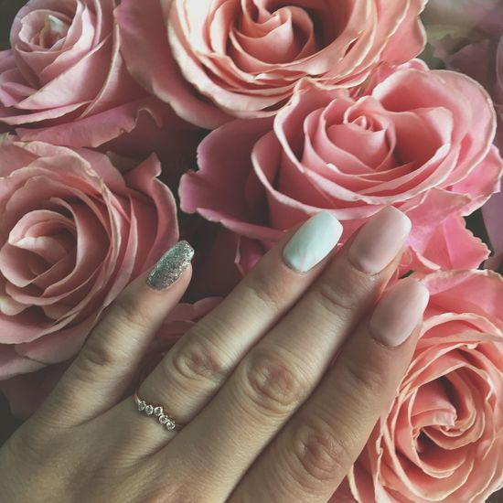 Human Body Part Pink Color Close-up Human Hand Hand Beauty In Nature Rosé Human Finger Vulnerability  Rose - Flower Flowering Plant Finger Freshness Body Part Plant Flower Fragility Full Frame Ring Nail
