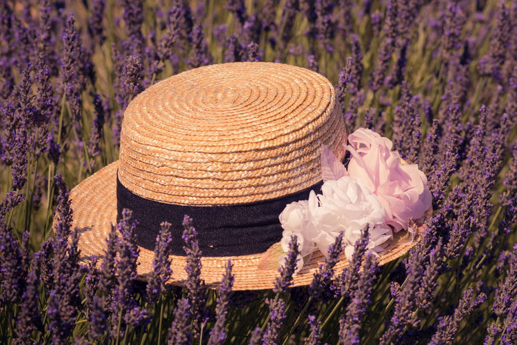 Close-Up Of Hat Amidst Fresh Purple Flowers In Field