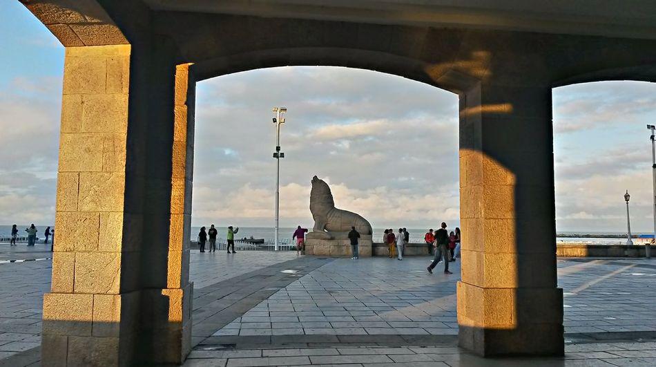 Lobo marino, estatua de Fioravantti. Mardelplata2016 Argentina Hello World Atardecer Sunset Argentine Mar Del Plata Argentina Hola Mundo ✌ Argentinean