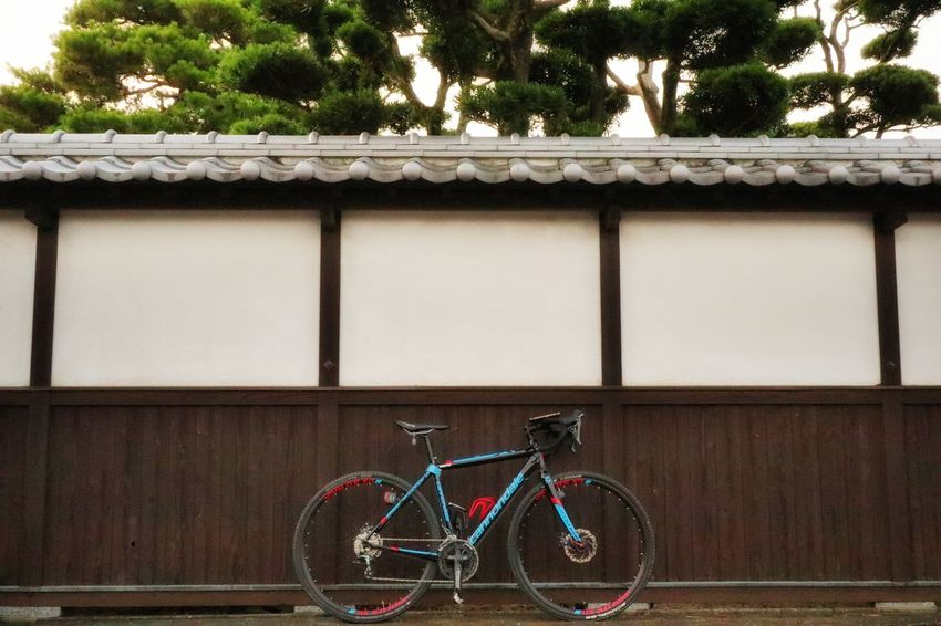 Cannondale CAADX teagra 2016 ride in Japan Wall - Building Feature Wall Cycling Roadbike Bike 朝チャリ 自転車 サイクリング EyeEm Gallery EyeEmNewHere Japan Japanese Garden Japan Photography Japan Building Bicycle Tree Architecture Building Exterior Exercise Bike Shrine Pedal Pure Spoke Mountain Bike Bmx Cycling Building Bicycle Rack Office Building Bicycle Lane