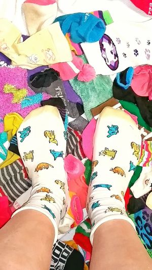 TK Maxx Socksie Multi Colored Cute Socks Fuzzy Softness Pattern Texture Legs And Feet Funny Socks Clothing Comfortable Cozy Design Socks Abundance Colorful Multicolors  Bright Colors Close-up Long Socks Soft Texture Dog Socks Foot Variaty Large Group Of Objects