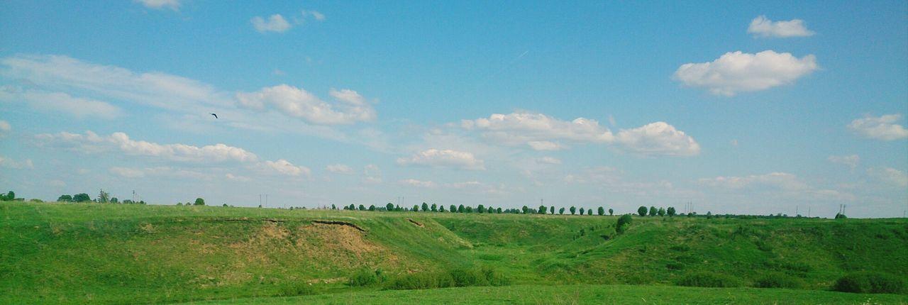 В окрестностях Суздаля. пейзаж Природа Nature Landscape