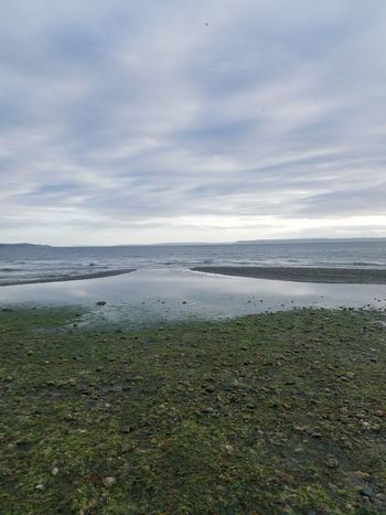 Beach Beauty In Nature Cloud - Sky Day Grass Horizon Over Water Landscape Nature No People Outdoors Scenics Sea Sky Tranquil Scene Tranquility Water