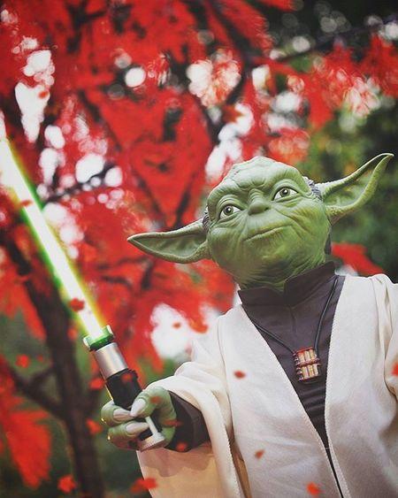 """Finally,it's Friday...Smile,you must""✋☺ ----------------------------------------- Starwars Stormtrooper TheForceAwakens Starwarsdaily Photooftheday Yoda Photoshoot Toygroup_alliance Toys Instalike Instagood Instadaily Instalove Quotes Toydiscovery Toyslagram Picoftheday Ig_bogota_ Instapic Instaphoto Justanothertoygroup Bestphoto Capture Friday Toyphotography epictoyart bepopular bestpicture bestpic ig_santanderes"