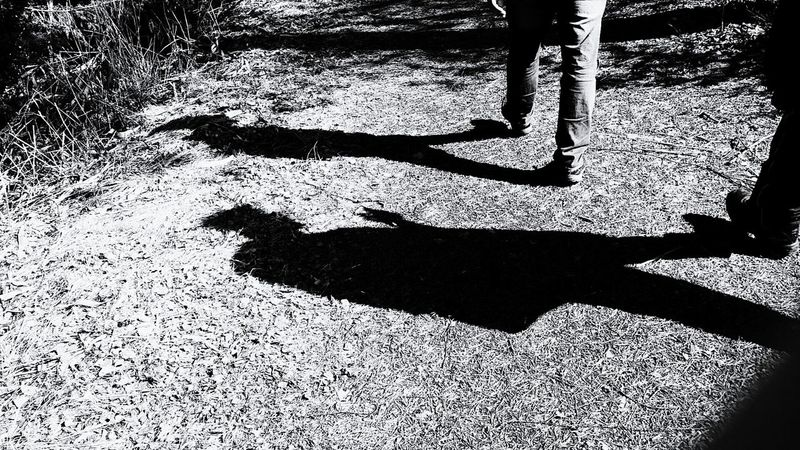 Shadow Phone Photography Photo♡ Nature Photo Of The Day Photography Photooftheday Life Lifestyles Photographer Photo Finland♥ Day Finland Looking At Camera PhonePhotography Heinola No People