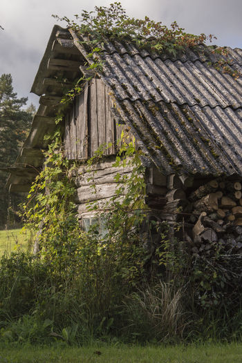 Bad Condition Cottage Das Alte Dorf Destruction Farm Building Holz House Nebengebäude Old Building  Old Village Outdoors Plants Rural Environment Rural Scene Sky The Old Building The Old Village Vertical Wooden Roof Moss Building Abandoned