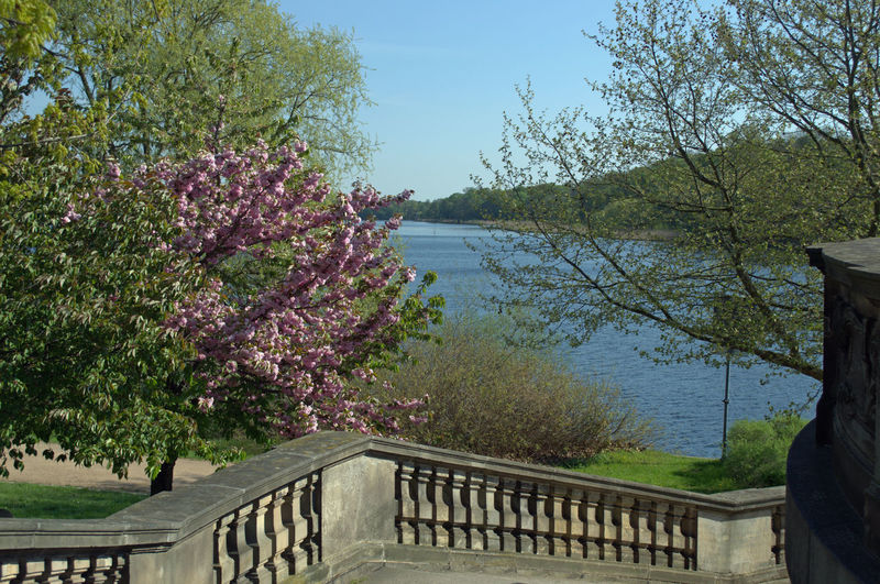 Wannsee Blooming Trees In Early Spring Day Freshness Nature No People Outdoors Railing Line Architecture Seascape Springtime