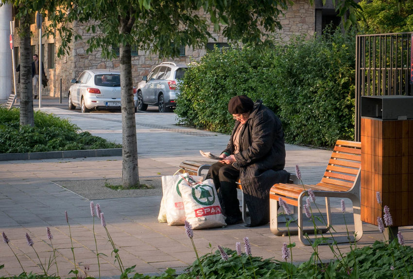 Budapest In The Sunshine Lonely On The Bench Reading Resting Woman The Street Photographer - 2016 EyeEm Awards