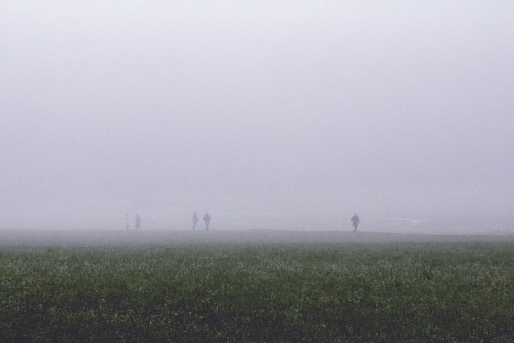 Scenic view of field against sky at foggy weather