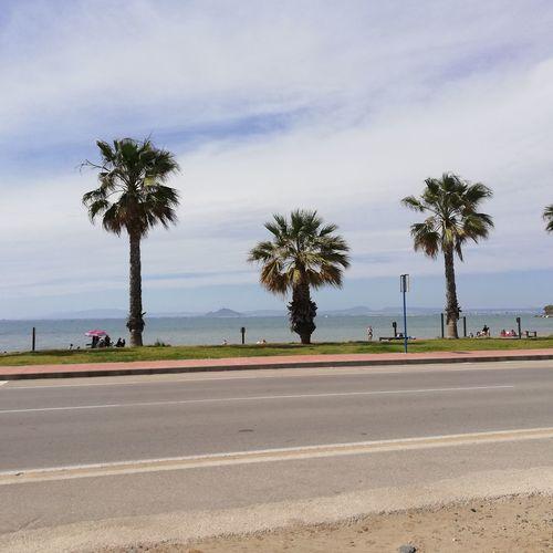 Mar menor - Spanien Tree City Palm Tree Beach Road Sand Water Photography Themes Sky Landscape Coastline