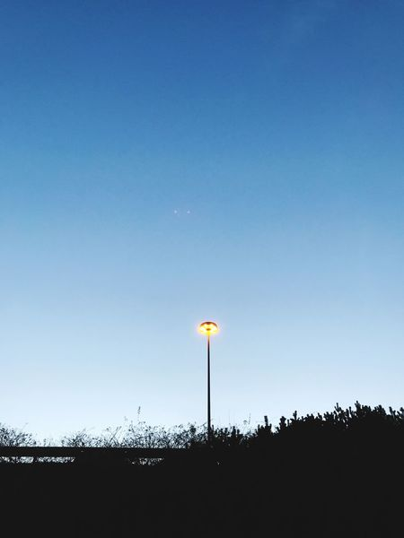 Light Evening Sky Evening Street Lamp Street Light Copy Space Blue Outdoors Clear Sky Nature Low Angle View Sky No People