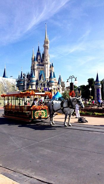 Orlando Florida Traveling Enjoying Life Taking Photos DisneyWorld