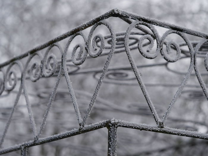 Close-up of frozen gate