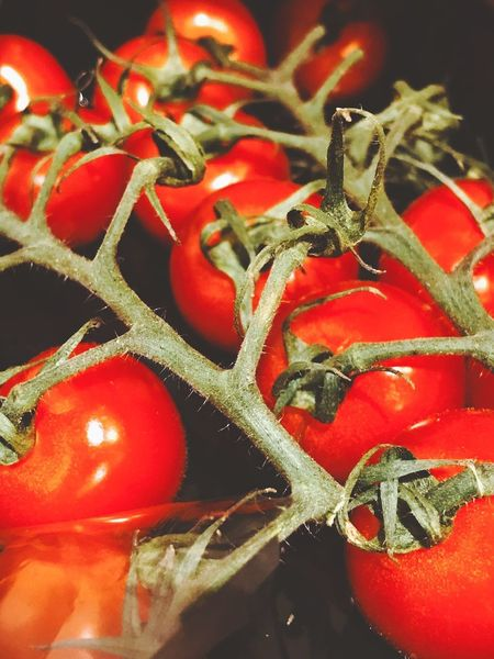 Green Red Vegan Vegan Food Tomato Red Food And Drink Vegetable Close-up No People Food Freshness Nature Healthy Eating Day Indoors