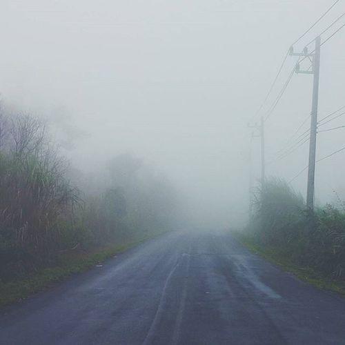 Road to heaven Theelorzuwterfall Tak Vscocam VSCO fog