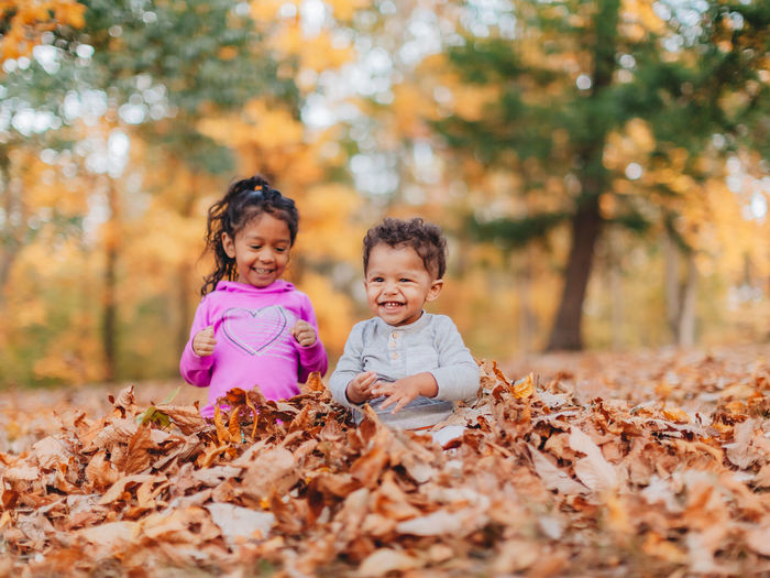 Cute siblings playing while sitting on autumn leaf in forest