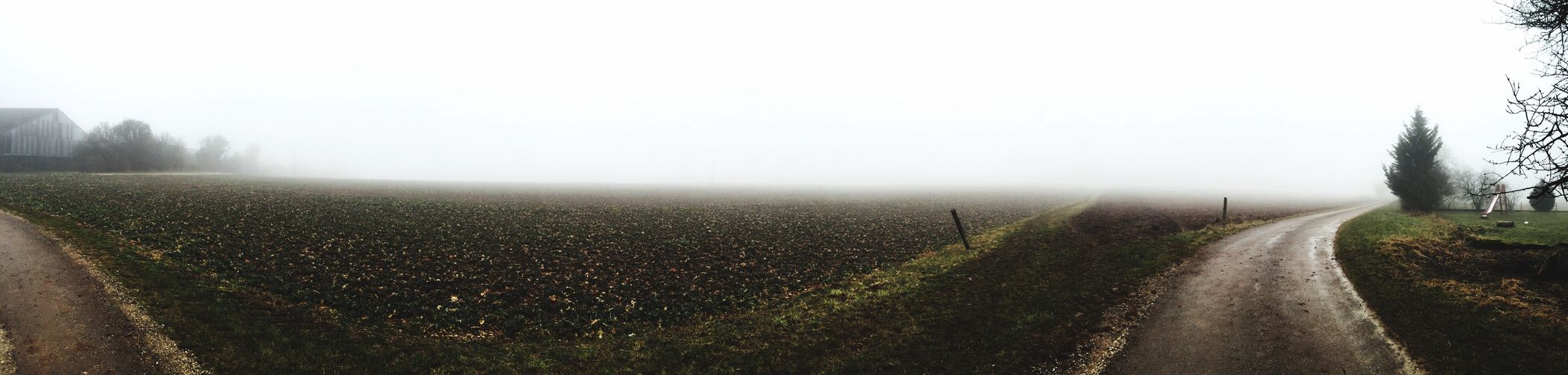 IPhoneography Panorama Fog Alone