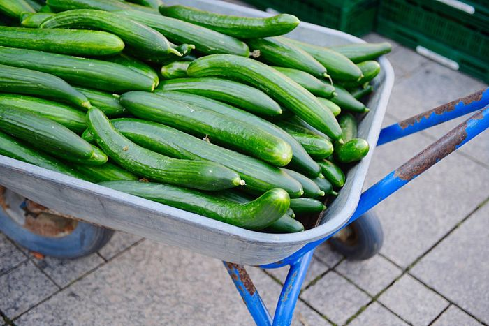 Cucumber Cucumis Sativus Market Stall Pushcart Wheelbarrow EyeEm Selects Food Vegetable Green Color Food And Drink Healthy Eating Wellbeing Market High Angle View Container Retail  Raw Food No People Still Life For Sale Abundance Large Group Of Objects Day Outdoors Freshness