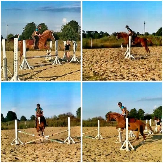 Me and Hilda ?? SHOWJUMPING!?? Showjumping Equestrian Horseriding Equestrian Life