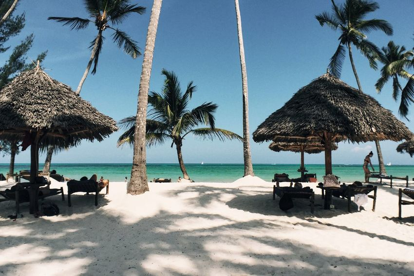 Perfect Day Hanging Out Relaxing Enjoying Life Beach Coconut Nature Beachlife Palm Trees Sand Relax Sun Relaxing Hanging Out Hi! Perfectbeach Dreambeach Beachphotography