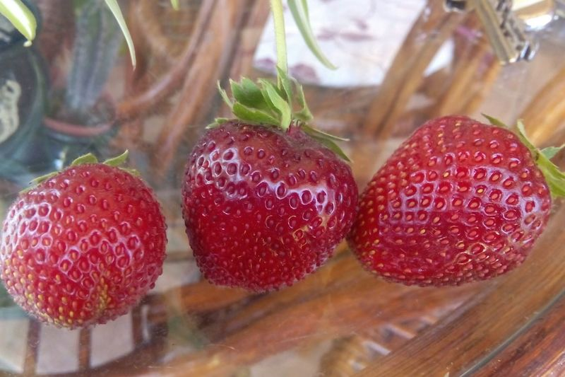 Close-up of strawberries on glass table