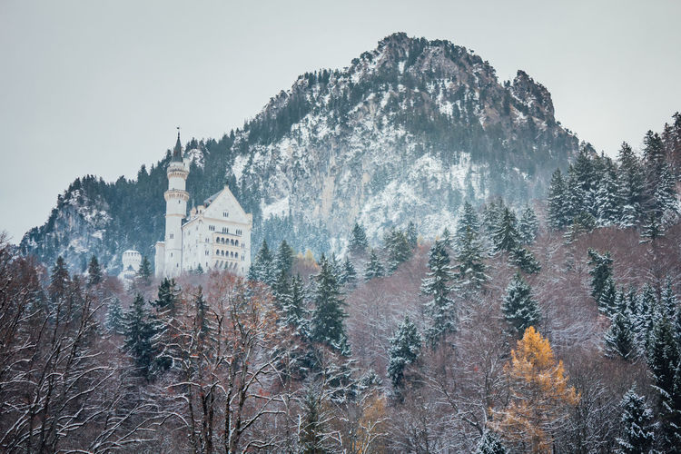 Fussen, Germany - November 17, 2017: Beautiful view of famous Neuschwanstein Castle with scenic mountain landscape near Fussen, southwest Bavaria, Germany. Tree Cold Temperature Winter Snow Plant Sky Nature Mountain Land Architecture Beauty In Nature Building Exterior Scenics - Nature Built Structure Day Growth Forest Building Outdoors Snowcapped Mountain Snowing Pine Tree Pine Woodland Neuschwanstein Castle My Best Photo