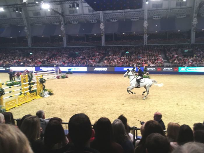 Sorry for bad quality😬 Sport Competition Olympia Horse Riding Horse