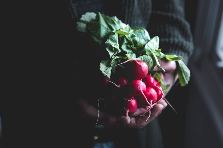 Midsection Of Person Holding Radishes At Home